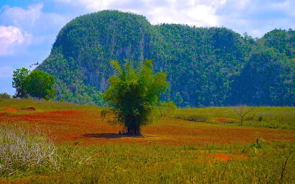 Vinales Tal Kuba