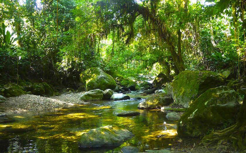 Rio Buritaca - ein steter Wegbegleiter auf dem Ciudad Perdida Trekking zur Verlorenen Stadt Kolumbien