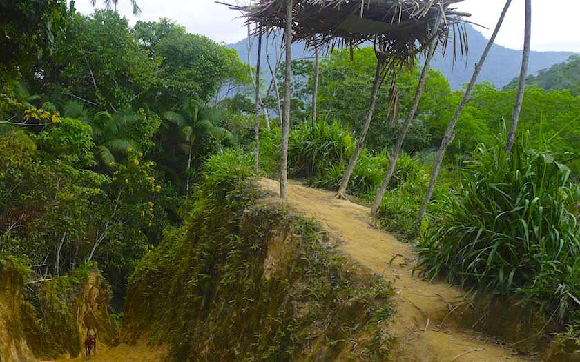 Trekking Ciudad Perdida - eines der schönsten Dschungel-Abenteuer in Kolumbien