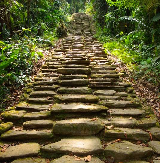 Treppen zur Cuidad Perdida Kolumbien