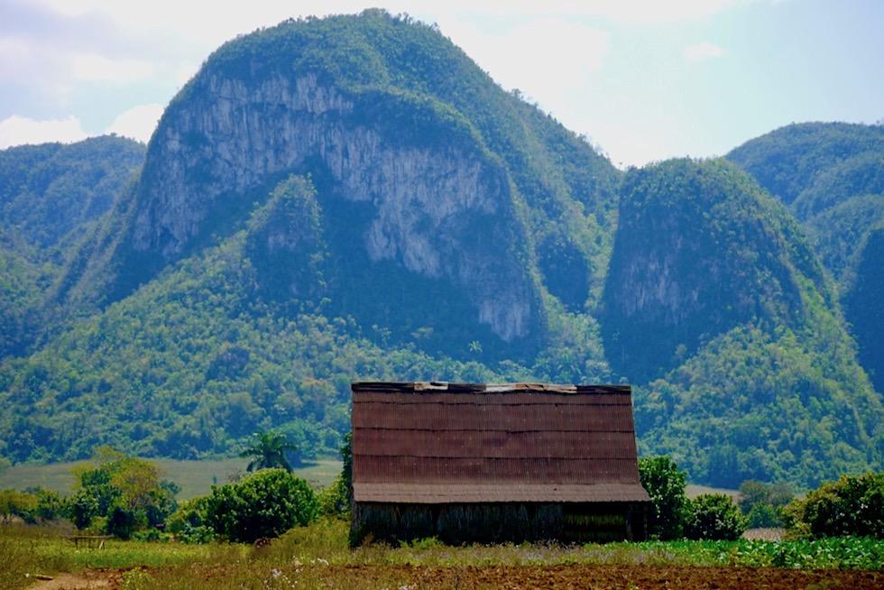 Valle de Vinales - Karstberge oder Mogotes - Kuba von seiner schönsten Seite