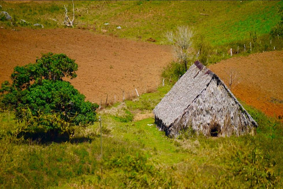 Vinales Tal - Typischer Schuppen zum Trocknen der Tabakblätter - Kuba