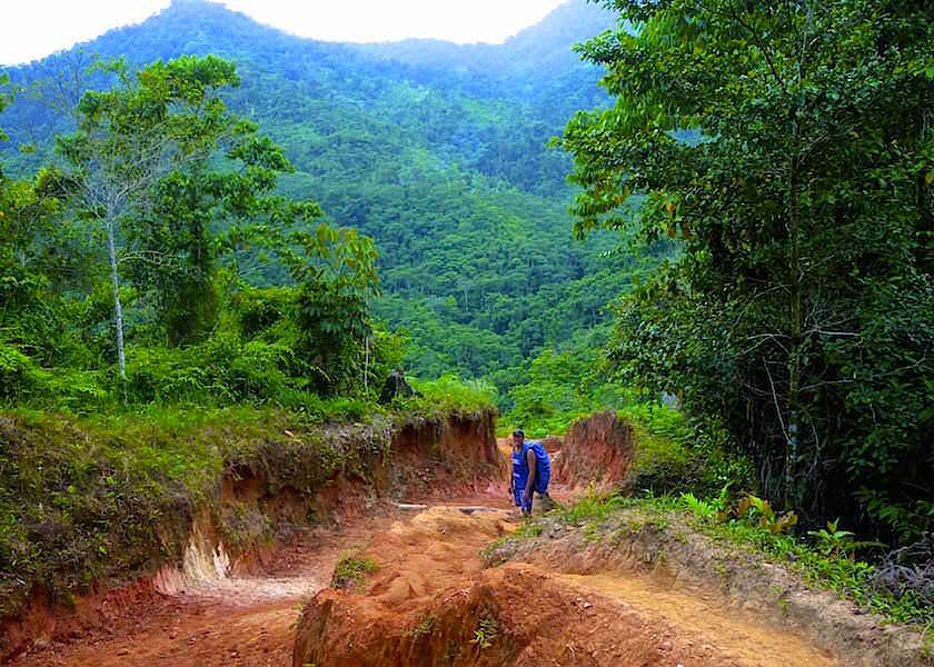 Wanderung Ciudad Perdida zwischen schmalen Pfaden & breiten Schneisen - Kolumbien