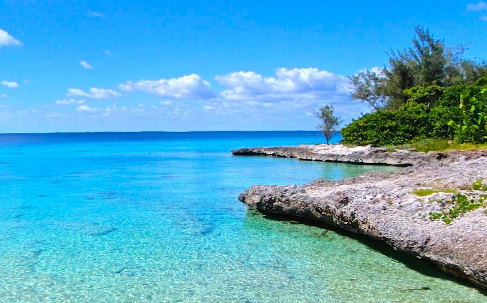 Zwischen Playa Larga und Playa Giron Schweinebucht Kuba