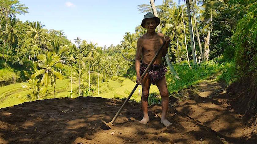 Anlegen von Reisterrassen Bali Indonesien