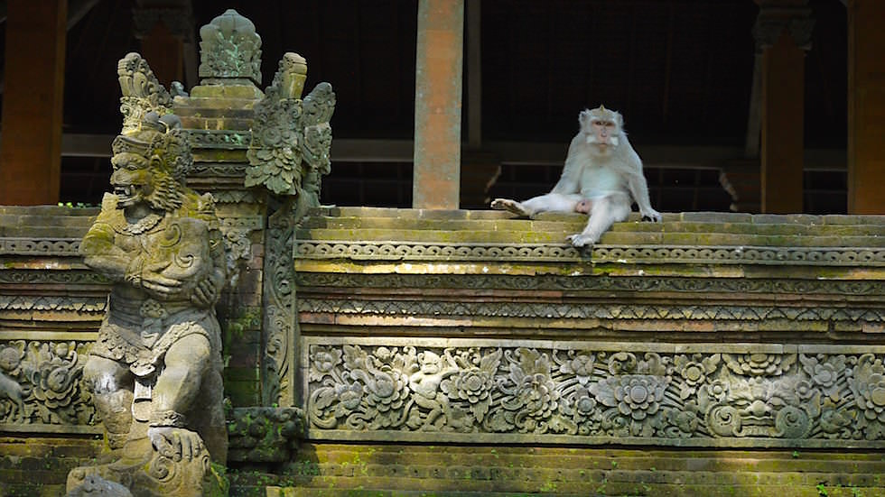 Pura Dalem Agung Padangtegal - Monkey Forest in Ubud, Bali