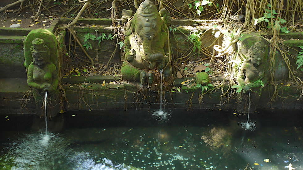 Holy Spring - Monkey Forest in Ubud, Bali