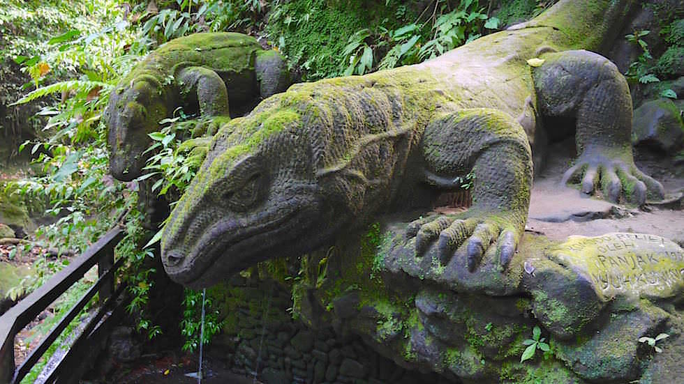 Komodo Dragon at Holy Spring - Monkey Forest in Ubud, Bali