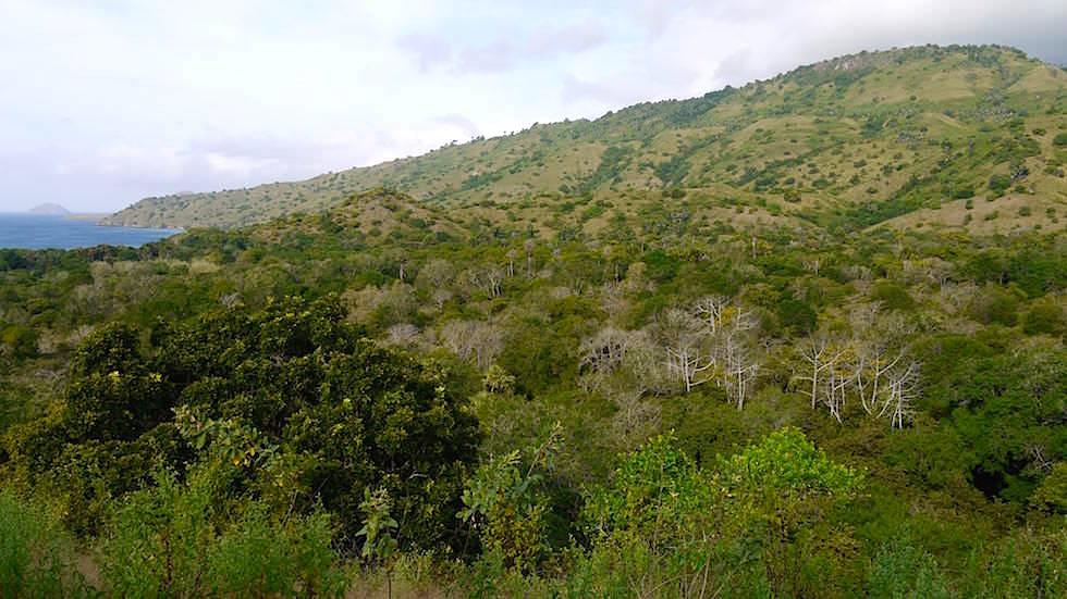 Komodo Island Ausblick von der Wanderung durch den Komodo Nationalpark in Indonesien
