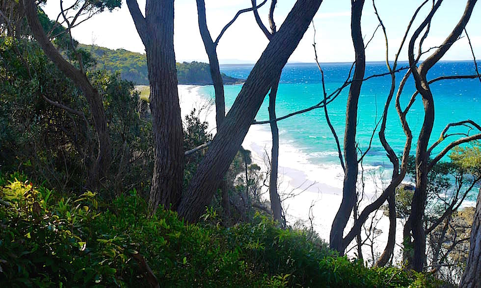 Hyams Beach - weißer Sand - Jervis Bay in New South Wales Australia