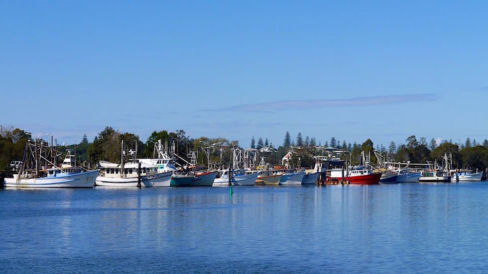 Fischfangflotte Yamba -Clarence River - New South Wales Australien