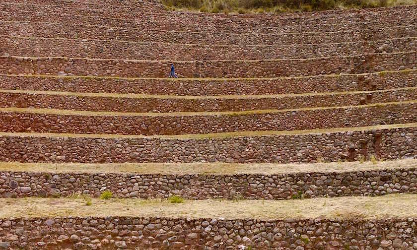 Highlights des Valle de Sagrado - Moray: Blick auf die angelegten Steinterrassen - Cusco - Peru
