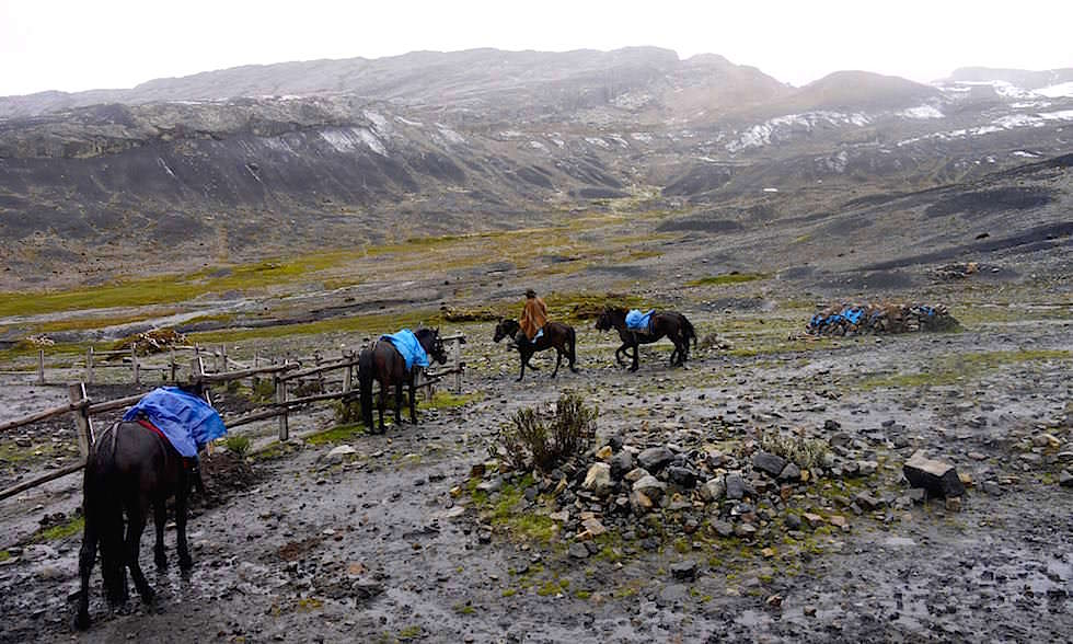 Pastoruri Gletscher Transport mit Pferden - Nationalpark Huascaran - Huaraz - Peru