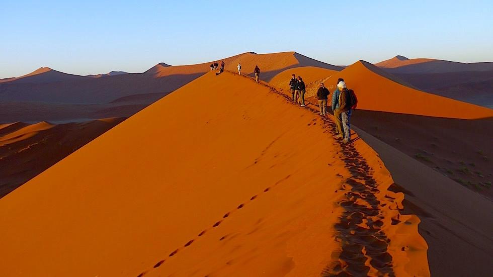 Dune 45 - Namib Wüste - Die schönsten Namibia Sanddünen - Afrika