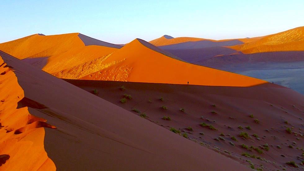 Dune 45 bei Sonnenaufgang - Namib Wüste - Die schönsten Namibia Sanddünen - Afrika