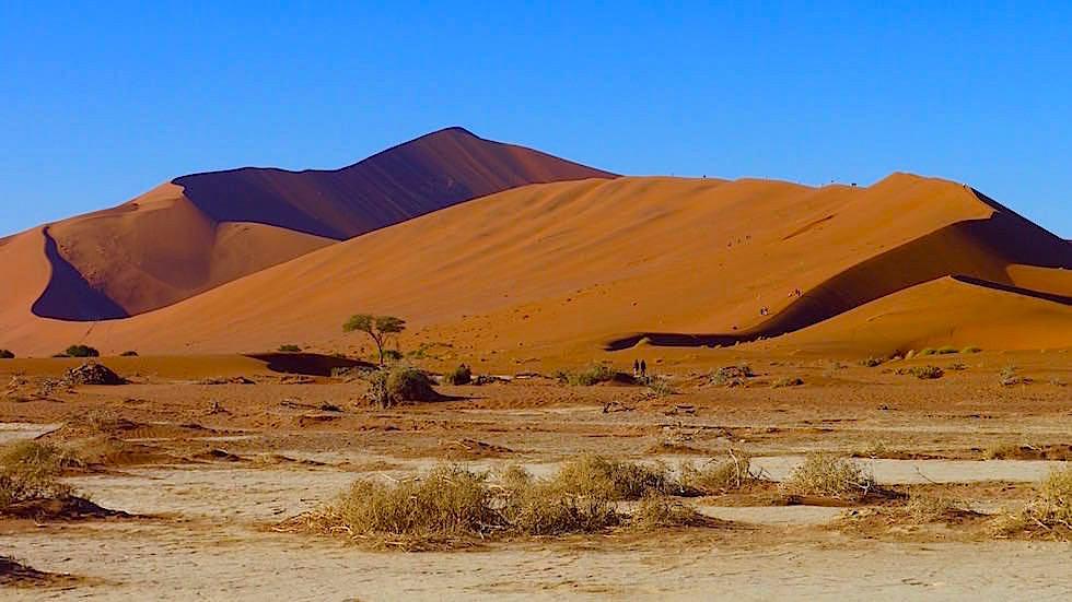 Deadvlei - Sossusvlei - Die schönsten Namibia Sanddünen - Afrika