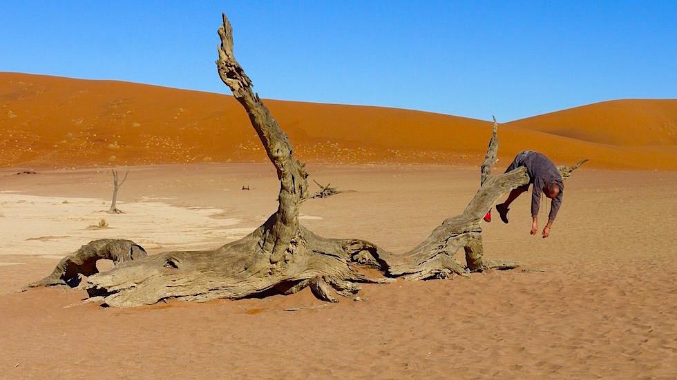 Deadvlei Salvador Dali - Namib Wüste - Die schönsten Namibia Sanddünen - Afrika