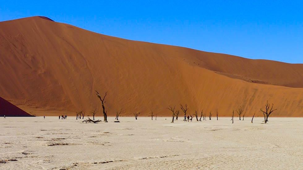 Deadvlei - Namibia Sanddünen in der Namib Wüste - Afrika