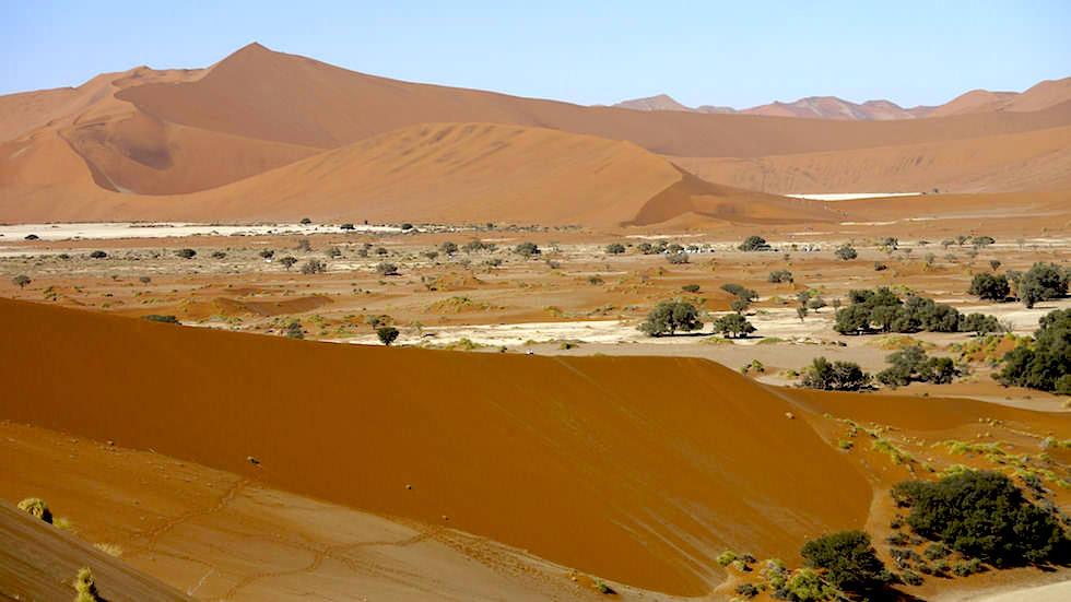 Blick auf Big Daddy - Sanddünen Namib Sossusvlei - Namibia Afrika