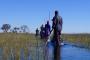 Okavango Delta mit dem Mokoro – Das tierreichste Feuchtgebiet Afrikas hautnah erleben!