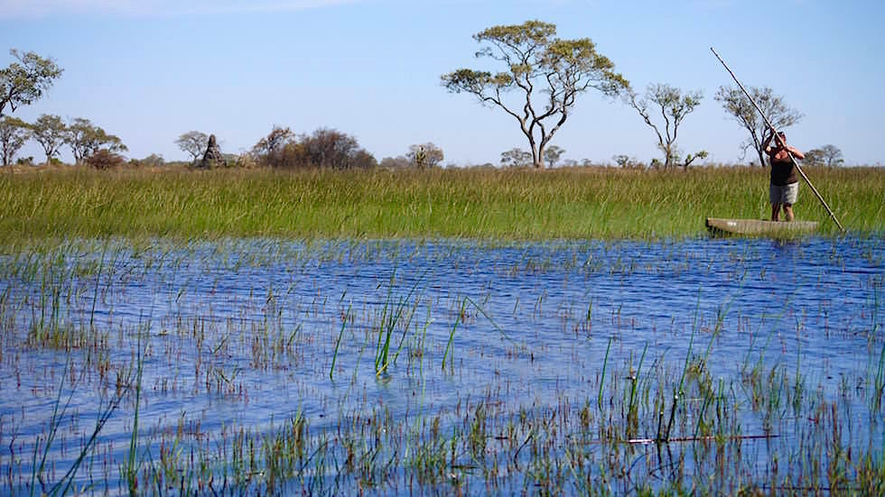 Okavango Delta - Mokoro - Einbaum fahren Botswana Afrika