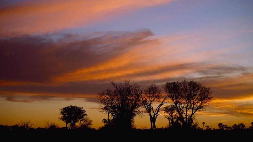 Okavango Delta - Sonnenuntergang im Moremi Wildlife Resort - Botswana Afrika