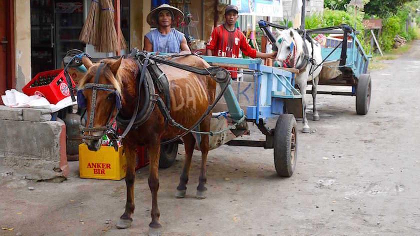 Pferdewagen statt Autos - Gili Meno Indonesien
