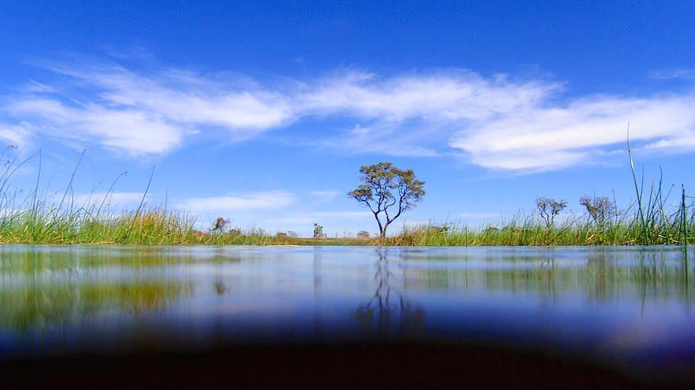 See im Okavango Delta Botswana