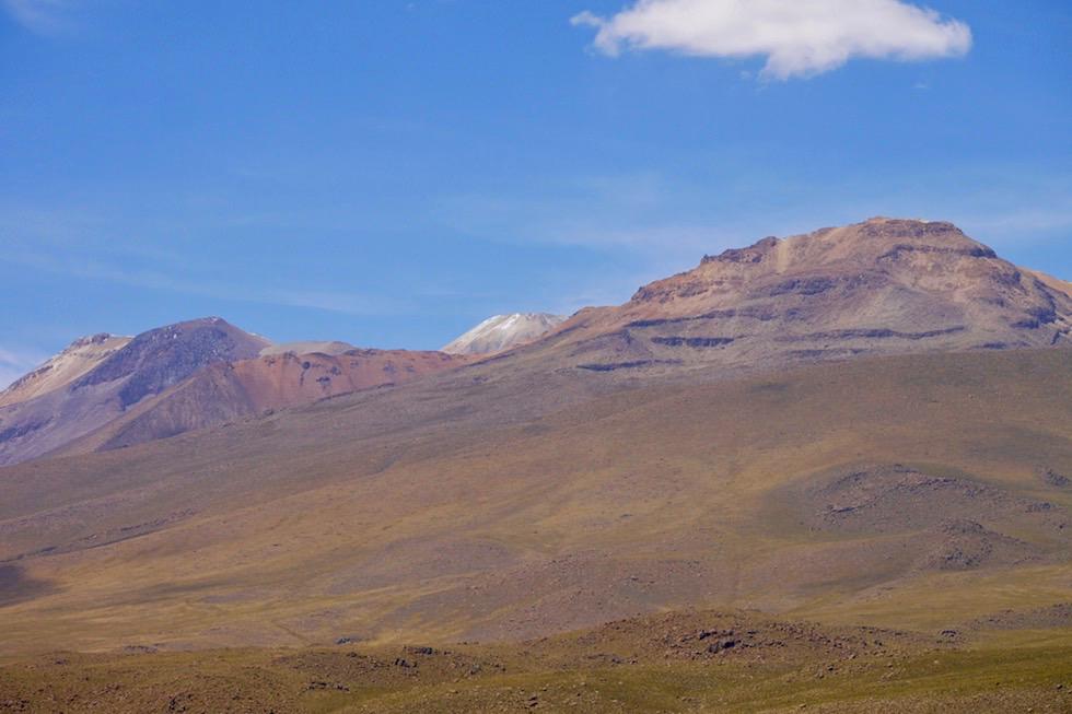Blick auf Chachani & Bergwelt - Salinas y Aguada Blanca National Reserve - Arequipa - Peru