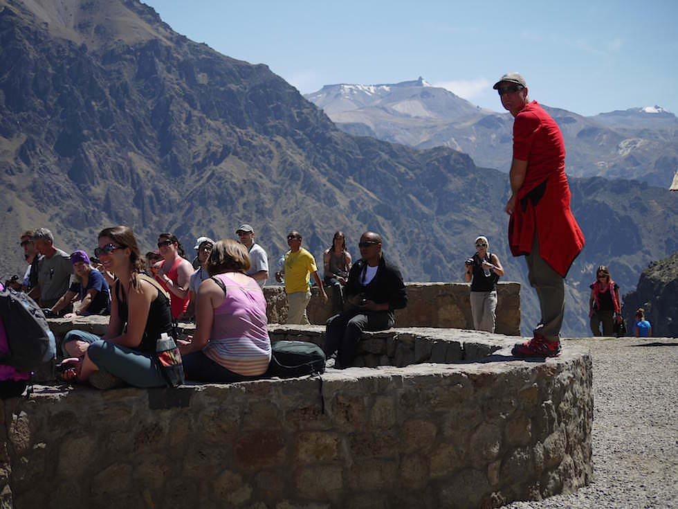 Aussichtsplattform Cruz del Condor - Lama Colca Canyon - Chivay- Peru