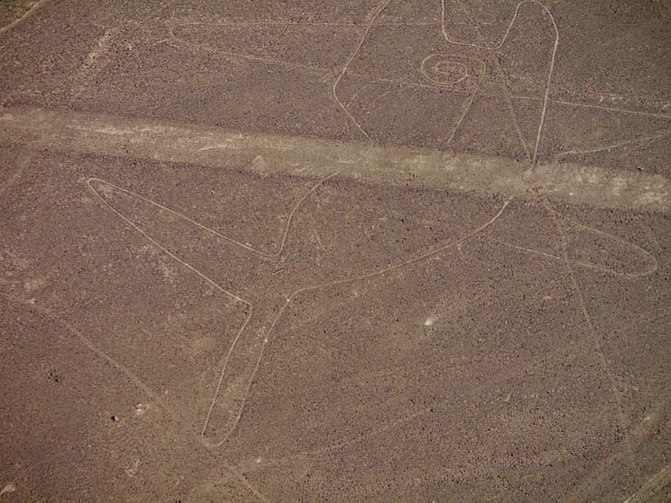 Wal Nasca Lines Nasca Wüste Peru