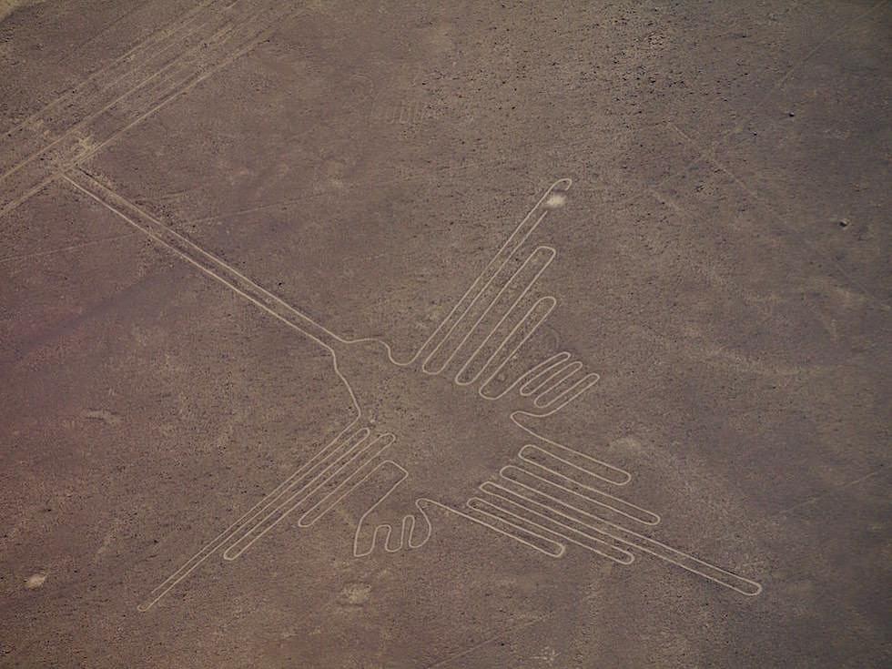 Kolibri Nasca Lines Nasca Wüste Peru
