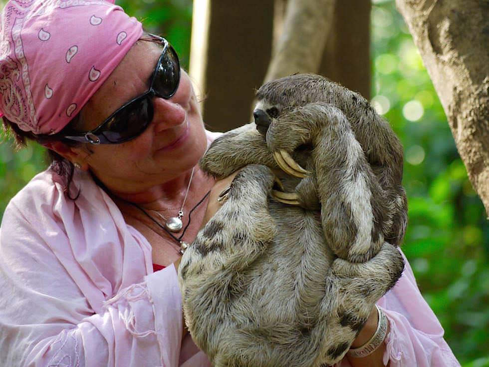Faultier im Arm - Abenteuer Amazonas Dschungel Tour - Peru