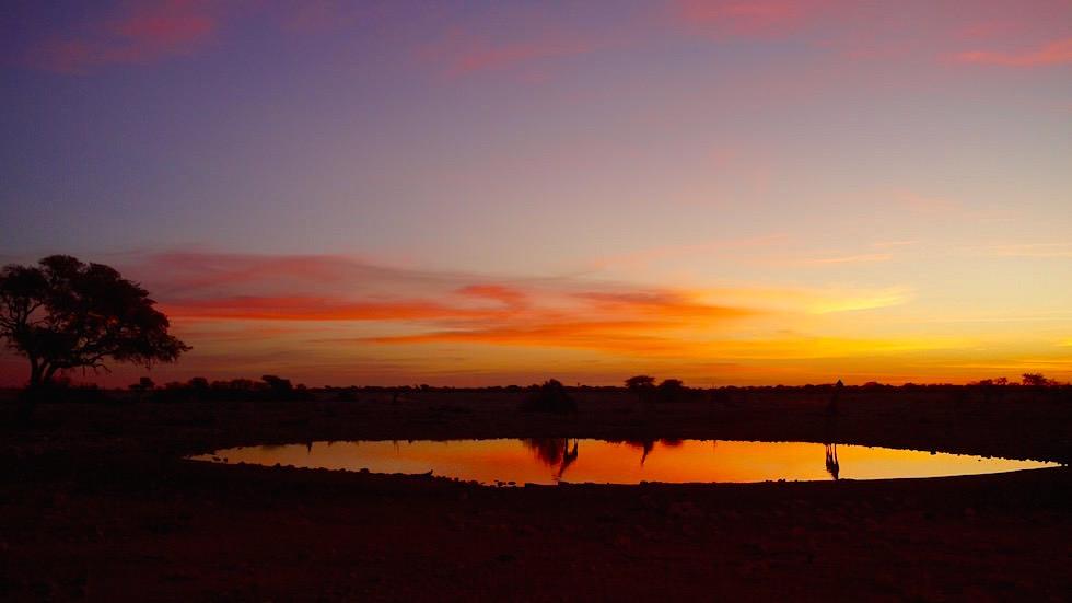Wasserloch Okaukuejo Camp Etosha Nationalpark Namibia