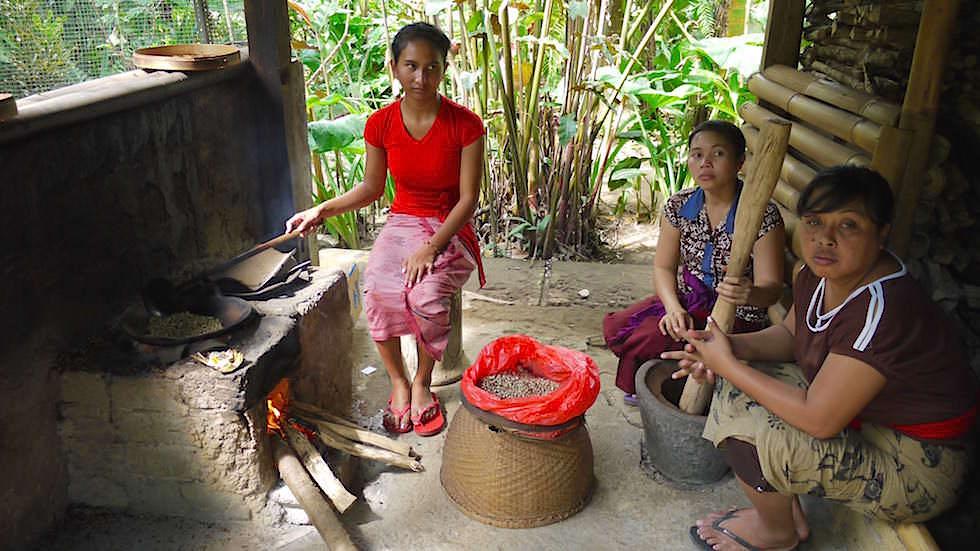 Herstellung Luwak Kaffee - Von Ubud nach Lovina - Bali, Indonesien