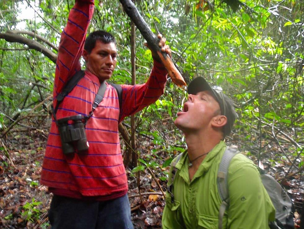 Lianen Wasser - Abenteuer Amazonas Dschungel Tour - Peru