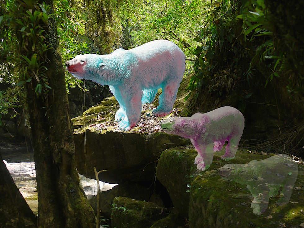 Ayahuasca Amazonas Schamanen Rital Peru