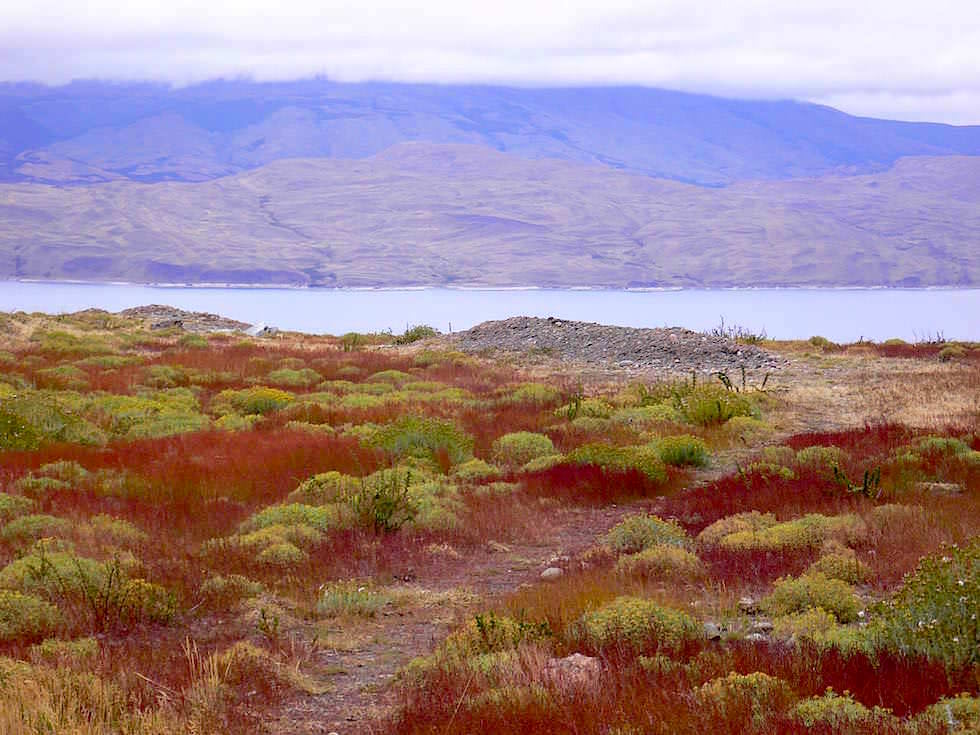 Laguna Cebolla - Torres del Paine Nationalpark - Patagonien, Süd-Chile