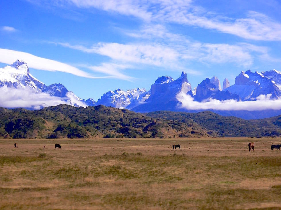 Sightseeing - Lago Pehoe - Torres del Paine Nationalpark - Patagonien, Süd-Chile