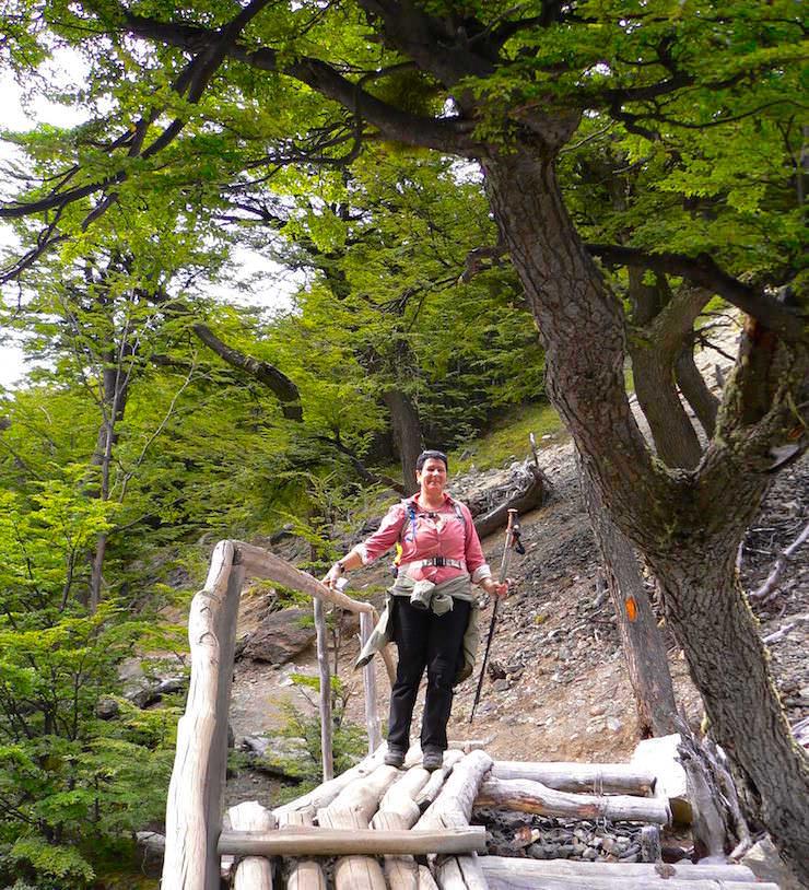 Waldweg zum Mirador las Torres - Torres del Paine Nationalpark - Patagonien, Süd-Chile