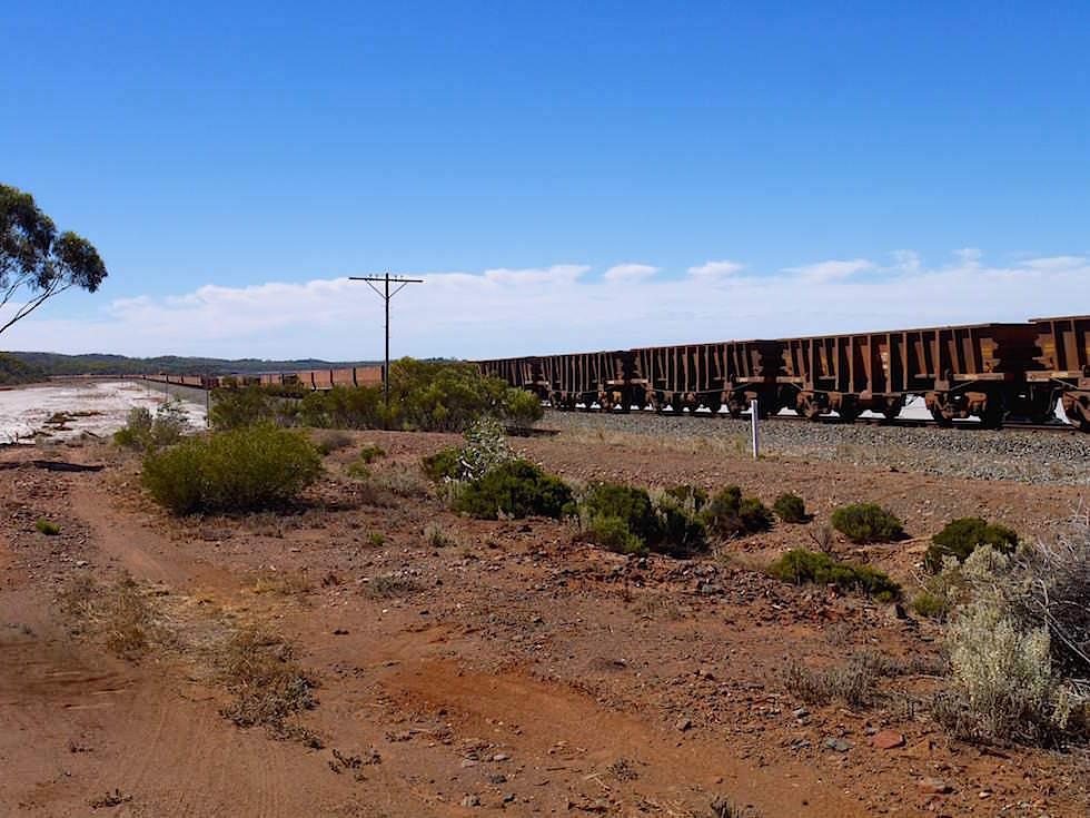 Güterzug von Kalgoorlie nach Esperance - Western Australia