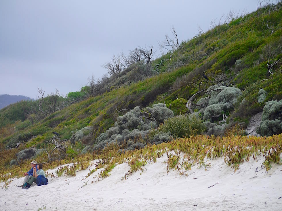 Squeaky Beach - Wilsons Promontory National Park - Victoria