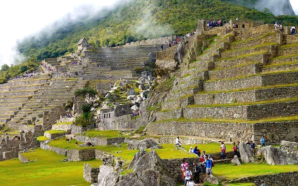 Terrassen Machu Picchu - Peru