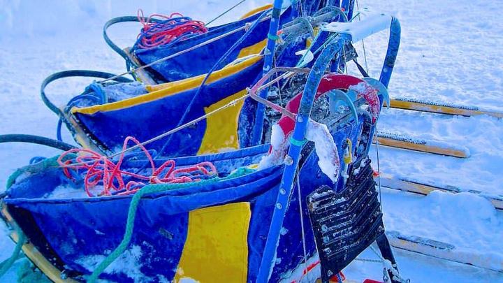 Husky Abenteuer außerhalb der Komfortzone - Vereiste Husky Schlitten - Schwedisch Lappland oberhalb des Polarkreises - Schweden