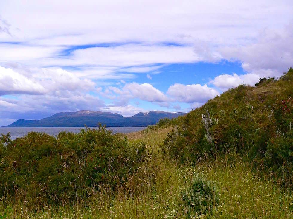 Landschaft bei Fuerte Bulnes - Punta Arena - Chile Patagonien