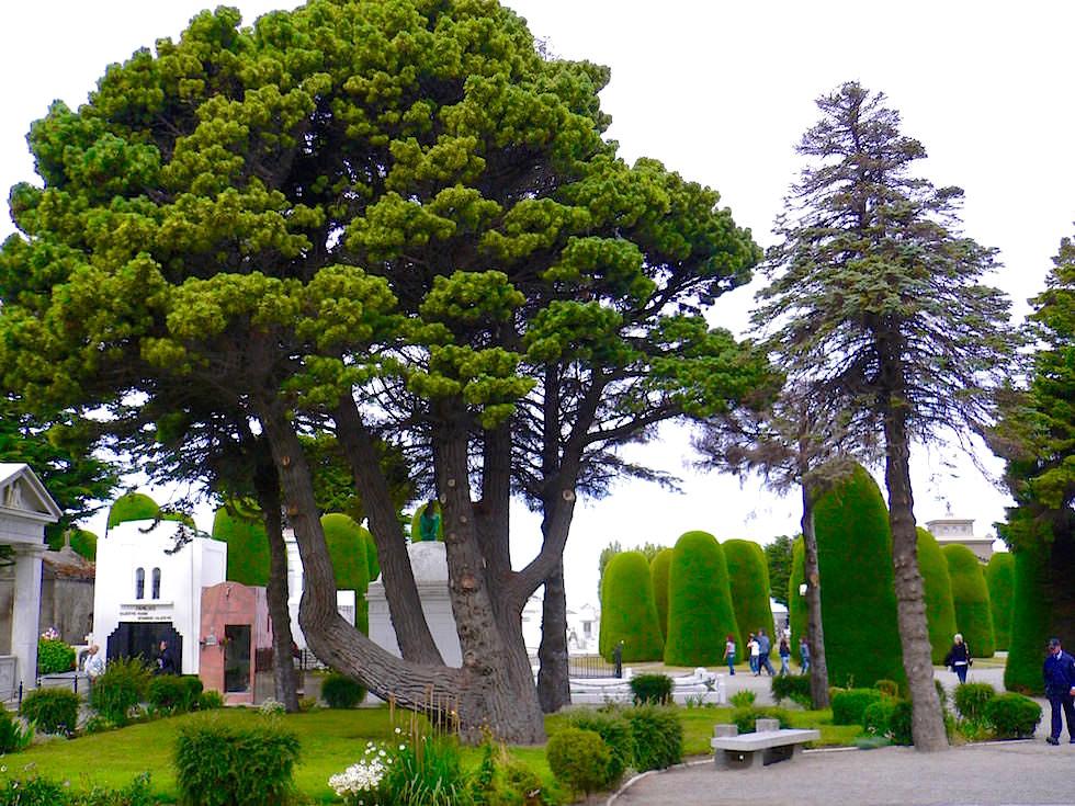 Punta Arenas Friedhof & Park - Chile - Patagonien