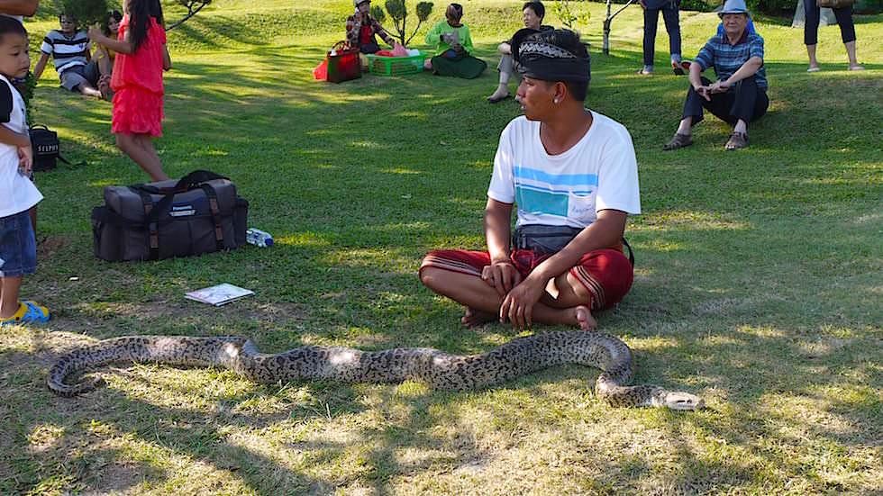 Foto-Essay: Mann mit Schlange - Bali