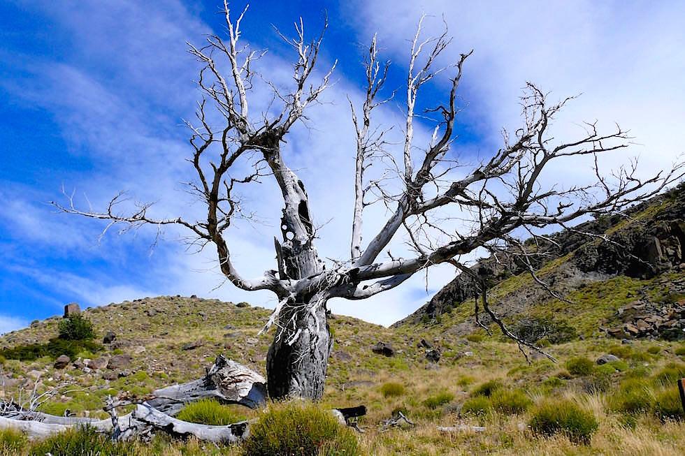 Mahnmal Laguna Torre - Cerro Torre - Patagonien Argentinien