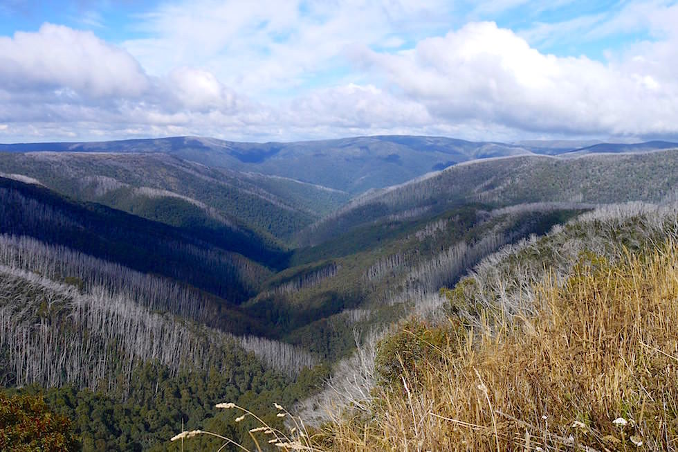 Region Mt Hotham - Great Alpine Road - Victoria