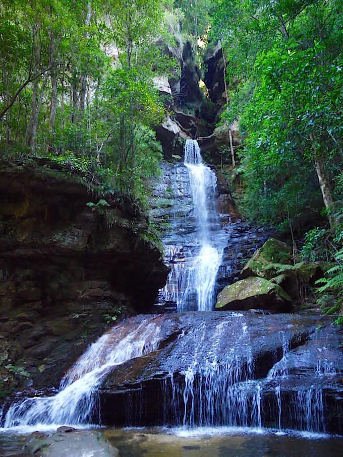 Empress Falls auf dem Weg zu den Wentworth Falls - Blue Mountains - NSW